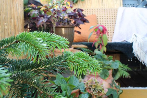 Indretning af altan efterår